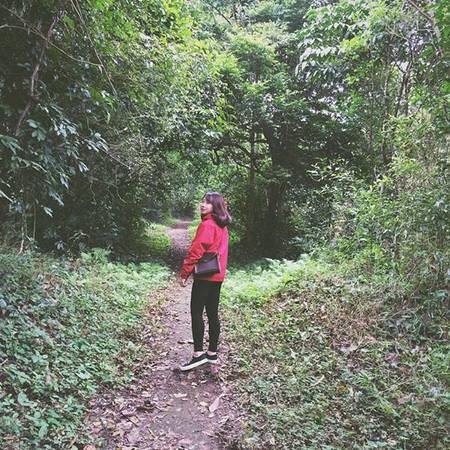 Du khách đến Cúc Phương có thể thỏa thích chiêm ngưỡng hệ động thực vật phong phú. Ảnh: trinhh.hanq/instagram