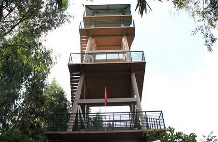 Tháp ngắm cảnh tại rừng Trà Sư