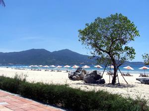 Bãi biển Phạm Văn Đồng nằm ngay tại trung tâm thành phố Đà Nẵng
