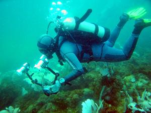 Lặn biển ở đảo Cát Bà
