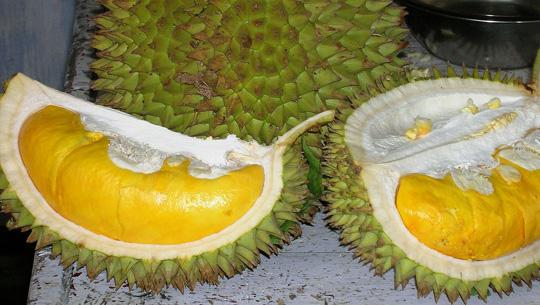 Trái sầu riêng