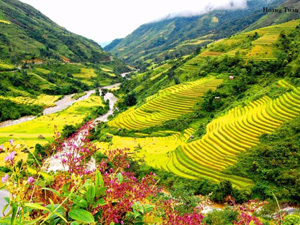 Thung lũng mường Hoa với những thửa ruộng bậc thang đẹp như tranh vẽ
