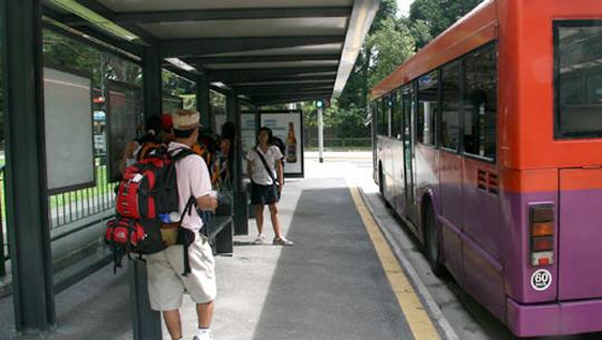 Xe bus ở Singapore