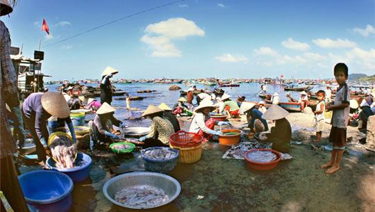 Hải sản tươi chợ Dương Đông