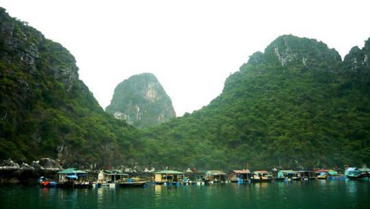 Làng chài Cửa Vạn, Hạ Long - iVIVU.com