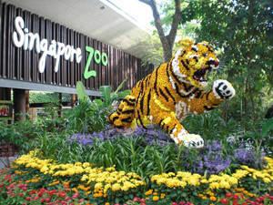 Vườn thú Singapore - iVIVU.com