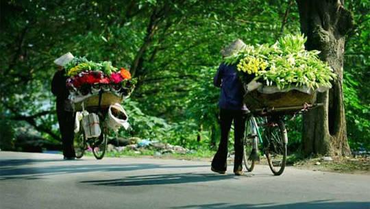 Hàng hoa ở Hà Nội