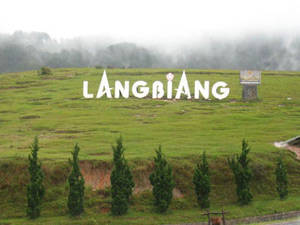 Núi Langbiang - Đà Lạt - iVIVU.com