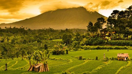 Đảo Bali - Indonesia - iVIVU.com