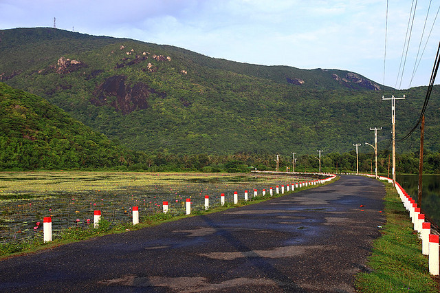 Con đường mang tên Hoàng Phi Yến
