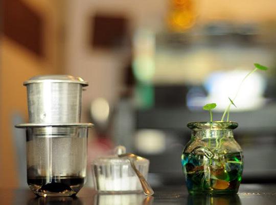 Ộp cafe - iVIVU.com