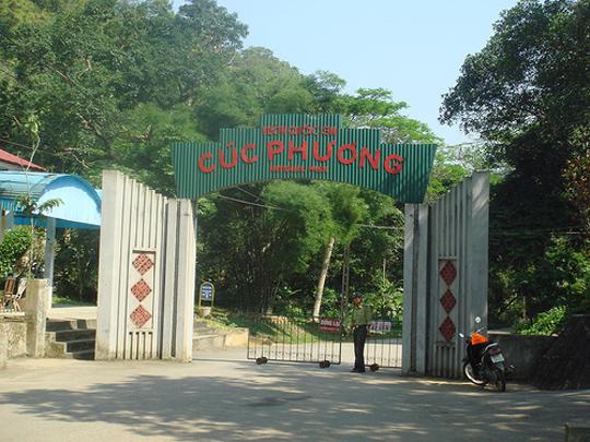 Khu du lịch sinh thái Rừng Cúc Phương