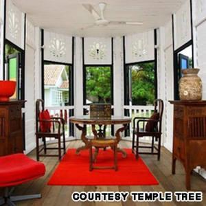 Temple Tree Inline - iVIVU.com