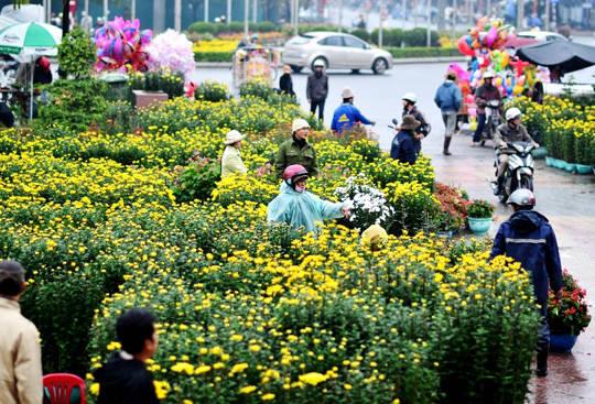 Du lịch Huế - Chợ hoa Tết - iVIVU.com