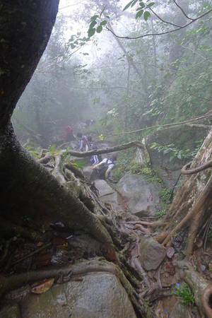 Trekking miền Nam - núi Bà Đen - iVIVU.com
