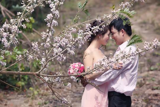 Hoa anh đào ở Long Hải - iVIVU.com