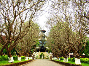 Description: Du lịch Kon Tum - Tòa giám mục- iVIVU.com