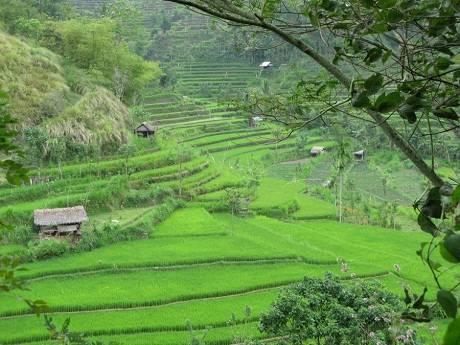 Du lịch Indonesia - đảo Bali - iVIVU.com