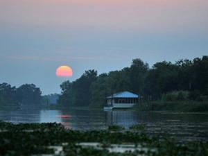 Du lịch Louisianam, Mỹ - bối cảnh phim dự Oscar - iVIVU.com