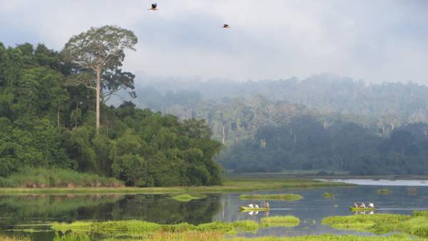 Du lịch Đồng Nai - Vườn quốc gia Nam Cát Tiên - iVIVU.com