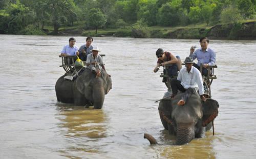 Du lịch Buôn Ma Thuột - cưỡi voi vượt sông Serepok - iVIVU.com