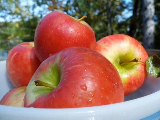 1 USD sẽ mua được 3 trái táo khi bạn đi du lịch Anh quốc-Cùng iVIVU.com