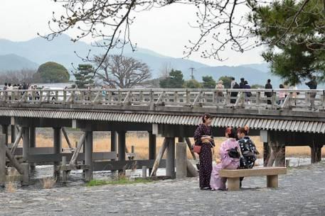 Sắc hoa anh đào nở rộ khắp Nhật Bản - Kyoto-1 - ivivu.com
