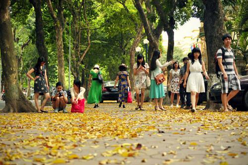 Hà Nội mùa lá sấu - Cùng iVIVU