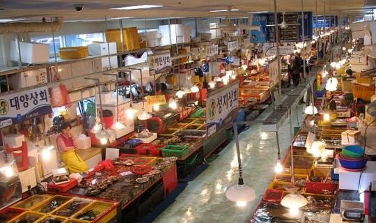 busan-jagalchi-fish-market-2