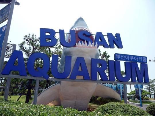 busan_aquarium_sign (1)