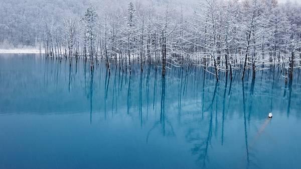 Hokkaido Biei