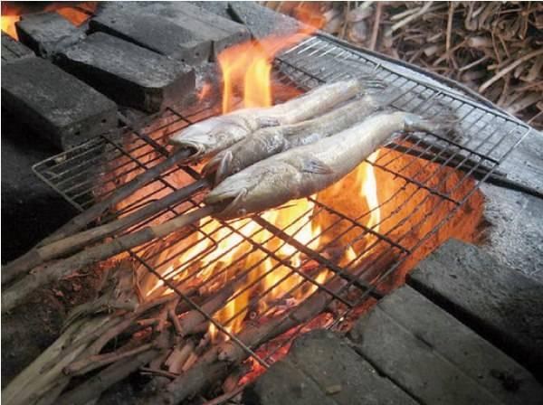 Món cá lóc nướng