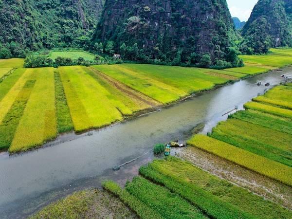 Ngồi thuyền lướt nhẹ trên mặt nước, du khách được tận hưởng không khí mát mẻ, trong lành giữa những cánh đồng lúa bao la, với cảnh đẹp mây trời.