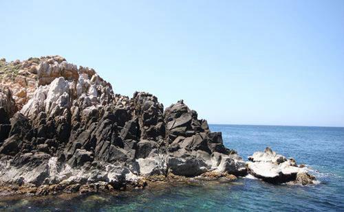 """Những vách đá như """"khô nẻ"""" trước nắng gió thường được chim yến và  hải âu chọn làm nơi trú ngụ…"""