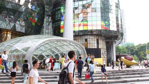 Ion-Orchard1