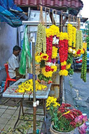Đảo Penang rộng 1.000 km2, khoảng 2 triệu dân với 4 tín ngưỡng chính: Đạo Phật, Ấn Độ Giáo, Hồi Giáo và Thiên Chúa Giáo.