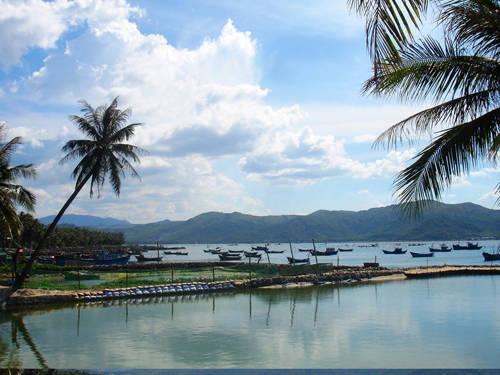 Phong cảnh thanh bình nhìn từ thôn Hòa Lợi.