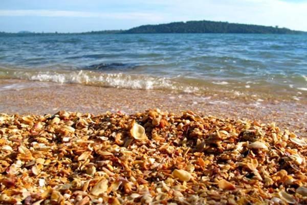 Vỏ sò trên bãi biển đảo Koh Thmei