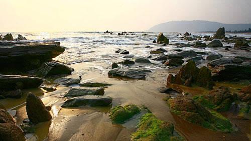 Những viên đá vùi trong cát và rêu phủ xanh