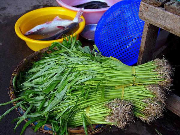 Những gánh rau xanh mướt vào buổi sớm tinh mơ.