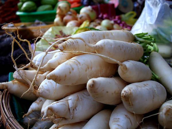 Củ cải trắng.