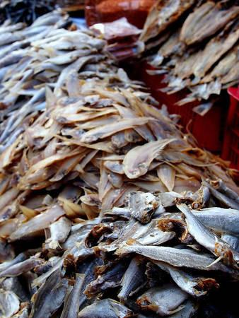Khô cá đa dạng và phong phú.