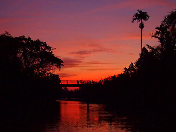 Trái ngược với buổi sáng tấp nập, quang cảnh của vùng sông nước vào buổi chiều tà bình yên và tĩnh lặng.
