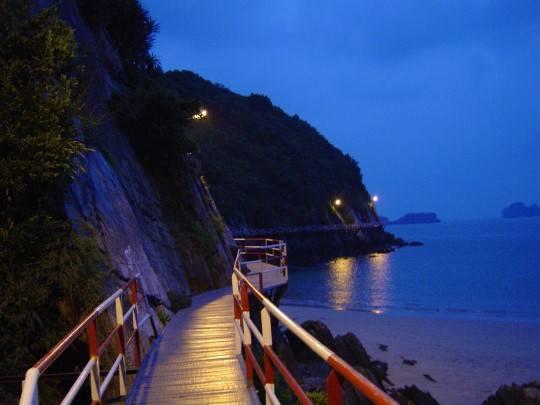Chiếc cầu nối về đêm