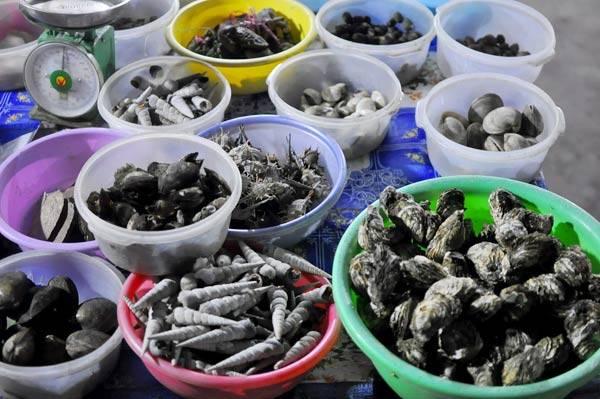 Hàng chục loại hải sản phong phú để thực khách chọn lựa