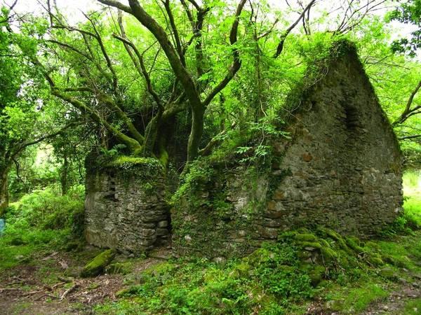 Đường mòn Kerry giữa Sneem và Kenmare, Ireland