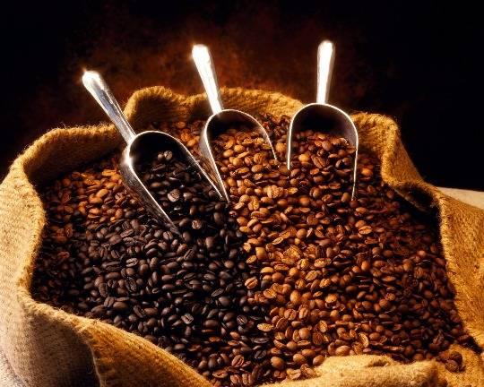 Một vòng bảo tàng cà phê ở Campuchia