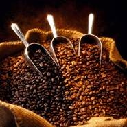 Organic_Coffee_Bean_Sack