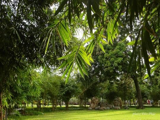 Công viên Gia Định: Một công viên xanh siêu to. Thích hợp cho những ai sống gần khu vực quận Gò Vấp, Tân Bình, Phú Nhuận.