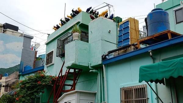 """Tác phẩm """"Người và những chú chim"""" trên nóc một ngôi nhà của nghệ sĩ Jun Young-jin"""